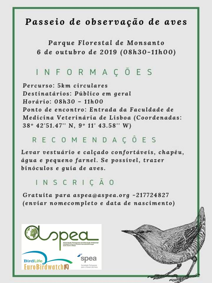 Poster aves061019